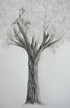 New simple tree drawing sketches Ideas Oak Tree Drawings, Tree Drawings Pencil, Easy Drawings, Tree Drawing Simple, Simple Tree, Paper Palm Tree, Palm Tree Tattoo Ankle, Ribbon On Christmas Tree, Bare Tree