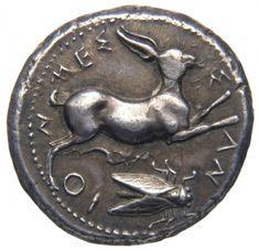 Tetradracma - argento - Messana (Messina), Sicilia (425-396 a.C.) - MEΣ-Σ-ΑΝ-ΙΟ-Ν una lepre salta vs.dx. in basso: una cicala - Münzkabinett Berlin