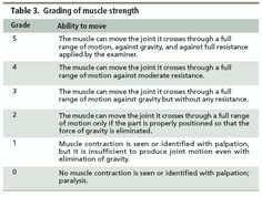 Manual muscle testing grading scale