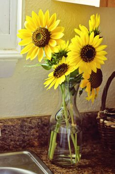 I love sunflowers & always will. Brightens me up every time.