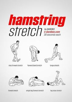 charts-post-workout-stretches-prevent-injuries - Fitness and Exercises Post Workout Stretches, Hamstring Workout, Flexibility Workout, Leg Stretches For Flexibility, Yoga Routine, Hiit, Cardio, Psoas Release, Tight Hamstrings