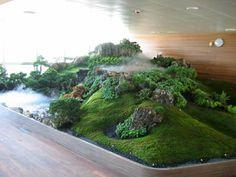 Paysaqua - Aquariums jardin sophistiqués à Montréal Aquarium Terrarium, Garden Terrarium, Bonsai Garden, Water Terrarium, Reptile Terrarium, Vivarium, Paludarium, Aquarium Landscape, Nature Aquarium