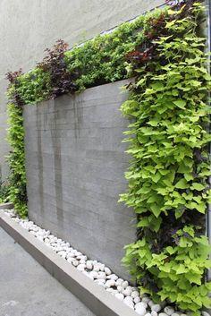 Jardines Verticales: Casas de estilo moderno por HUICHOL