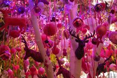 Pink christmass # intratuin