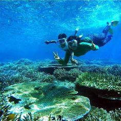 Tag your friends if you really want to go there with them  .  Lokasi/location: Tanjung Konde, Rum, Tidore, Maluku Utara .  Yang spesial dari Tanjung Konde adalah gugusan Table Coral yang besarnya mencapai 12-15 meter di kedalaman 5-7 meter dibawah permukaan laut. Dengan snorkeling saja sudah bisa dilihat keindahan terumbu karang dan biota laut yang tinggal di dalamnya .  Sumber: clara-indonesia.com  Credits to: @novalbadjiser  . Go check it out  .