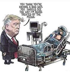 Pull The Damn Plug You Blithering, Fucking Idiot! Political Cartoons, Trump Cartoons, Political Art, Having A Bad Day, Dumb And Dumber, Donald Trump, Presidents, Shit Happens, Memes