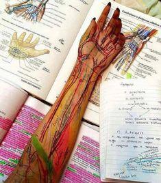 Medical Quotes, Medical Careers, Medical School, Funny Medical, Medicine Notes, Medical Wallpaper, Medical Anatomy, Med Student, Med School