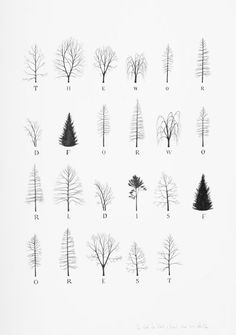 """Katie Holten has made a series of tree drawings. In 2015 she created a """"Tree Alphabet"""" and published the book """"About Trees"""". A series of tree drawings was commissioned by the Zentrum Paul Klee for the group exhibition """"About Trees"""" in 2016."""