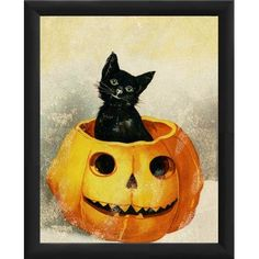 PTM Images Halloween Kitty in Pumpkin Framed Graphic Art