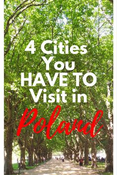 Planning a trip to Poland? These are 4 cities in Poland that you have to visit!