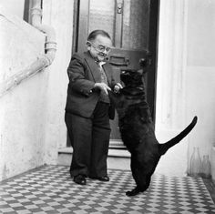 Funny pictures about The smallest man in the world dancing with his pet cat. Oh, and cool pics about The smallest man in the world dancing with his pet cat. Also, The smallest man in the world dancing with his pet cat photos. Crazy Cat Lady, Crazy Cats, Animal Gato, Gato Grande, Son Chat, Gatos Cats, Photo Chat, Small Cat, Cat People