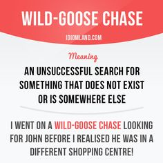 """Wild-goose chase"" is an unsuccessful search for something that does not exist or is somewhere else."