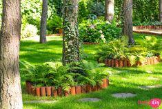 19 roślin, które będą rosły w zacienionych miejscach! - Twoje DIY Fire Pit Landscaping, Cottage Homes, Bonsai, Diy And Crafts, Pergola, Outdoor Structures, Landscape, Park, Inspiration
