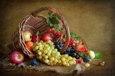 New Fruit Basket Drawing Paintings Still Life 21 Ideas Fruit Photography, Still Life Photography, Fruit Basket Drawing, Vegetable Pictures, Fruit Painting, Painting Art, Still Life Fruit, New Fruit, Fruit Fruit