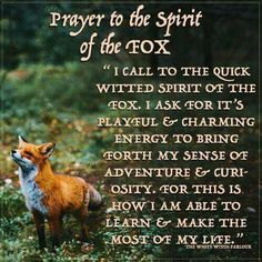 Fox Totem Prayer