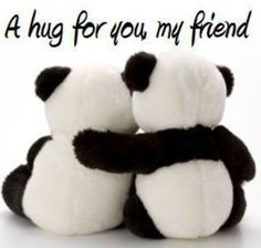 panda bear hug for you my friend Big Hugs For You, Hug You, Hug Pictures, My Best Friend, Best Friends, Dear Friend, Happy Hug Day, Happy Weekend, Friends Hugging