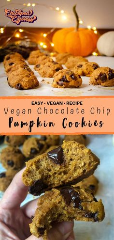 Best pumpkin cookie recipe for fall or thanksgiving! Pumpkin Cookie Recipe, Pumpkin Chocolate Chip Cookies, Chip Cookie Recipe, Pumpkin Recipes, Vegan Sweets, Vegan Snacks, Vegan Desserts, Vegan Appetizers, Vegan Foods