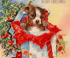 Vintage Christmas Puppy