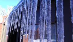 365 Sevens, Ice 1