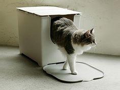 Modko Katch Litter Mat - cat stepping onto The Katch Litter Mat