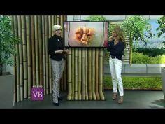 Você Bonita - Intestino, o segundo cérebro (06/08/14) - YouTube