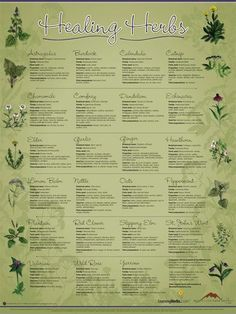 Healing Herbs chart. Can be ordered online.