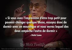 dalai lama quotes never give up Dalai Lama, The Words, Words Quotes, Me Quotes, Sayings, Start Quotes, Quote Citation, Life Quotes Love, French Quotes