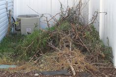 Follow steps for building a brush pile that can be used in any backyard for brush piles of any size in this easy step-by-step guide.