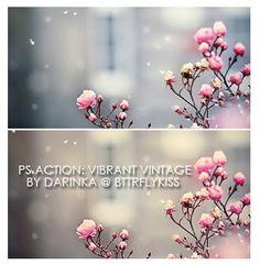 Vibrant vintage action by BTTRFLYKISS.deviantart.com on @deviantART