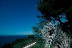 'The Human Nest' at Big Sur