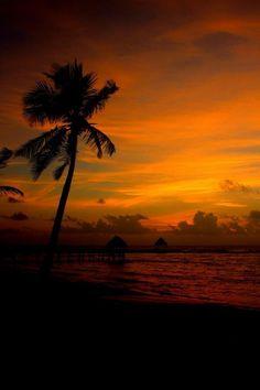Sunrise in Tulum, #Mexico. pic.twitter.com/SIHGjkO6sn