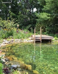 Natural Swimming Pool/Pond in Connecticut