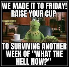 Work Memes, Work Humor, Haha Funny, Funny Jokes, Funny Minion, Funny Stuff, 9gag Funny, Random Stuff, Funny Photos