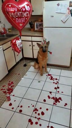 This is exactly what I want to come home to this Valentine's Day
