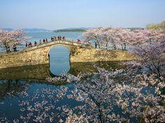 美しい!知られざる水の都・江蘇省のオススメ水辺の景色8選 8枚目の画像