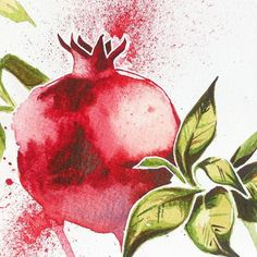 Nourigt sirem...?! #grenade #pomegranate #fruit #watercolor #poster #red…
