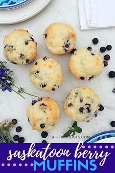 Saskatoon berry muffins make for a healthy after school snack. You'll love this easy dessert recipe with hints of lemon. Substitute blueberries if you can't find Saskatoon berries. Best Dessert Recipes, Fruit Recipes, Muffin Recipes, Easy Desserts, Breakfast Recipes, Appetizer Recipes, Recipies, Saskatoon Recipes, Saskatoon Berry Recipe