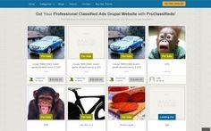 Drupal Themes ThemeSnap ProClassifieds