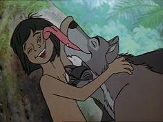 *The Jungle Book (1967) Phil Harris, Sebastian Cabot Director: Wolfgang Reitherman - based on Rudyard Kipling's book, the story of Mogwli, a human raised by animals.