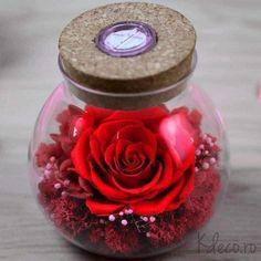 trandafir criogenat in glob sticla LED RGB Led, Design, Design Comics