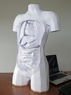 Paper torso with removable parts by Horst Kiechle. Amazing!  Reminds me of the human heart I knit for someone for Christmas a couple years ago...