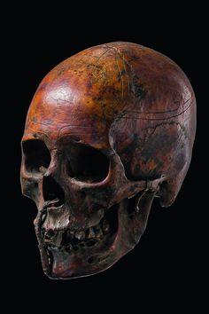 Trophy Skull, Dayak, Indonesia (Borneo)