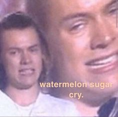 Harry Styles Memes, Harry Styles Pictures, One Direction Humor, One Direction Pictures, All Meme, Stupid Funny Memes, Response Memes, No Response, Funny Reaction Pictures