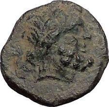 KOMANA in PISIDIA 1stCenBC Zeus Lion RARE Authentic Ancient Greek Coin i56235 https://trustedmedievalcoins.wordpress.com/2016/06/28/komana-in-pisidia-1stcenbc-zeus-lion-rare-authentic-ancient-greek-coin-i56235/