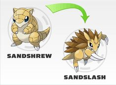 sandshrew evolution - Google Search