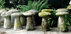 Assorted Staddle Stones (Mushroom Stones)