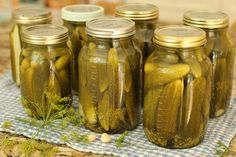Magic Method for Never-Fail Easy Dill Pickles and a Peek at the Late-Summer Garden Oven Canning, Canning Tips, Canning Recipes, Canning Dill Pickles, Garlic Dill Pickles, Lime Pickles, Canning Food Preservation, Preserving Food, Canning Vegetables