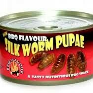 Canned Silkworm Pupae Most Disgusting Canned Foods Food & Drink picture - Easy Ethnic Recipes Scary Food, Gross Food, Weird Food, Retro Recipes, Vintage Recipes, Ethnic Recipes, Food Combining, Bad Food, Exotic Food
