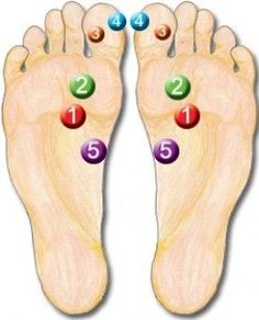 """This covers 5 Reflexology points that are found to be very powerful in this wonderful world of Reflexology.  I have given a quick description of how each reflex relates to the anatomy, a """"How to work section"""" and a picture to make it easy to see..."""