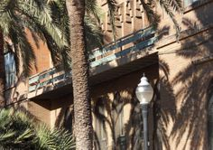 Shadows of the palm trees of the brick wall, on Passeig de Picasso